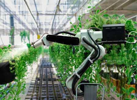Robot Arms in the Agricultural Industry