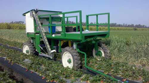 A robotic machine used for harvesting strawberries